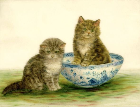 Kitten in a Bowl, Bessie Bamber