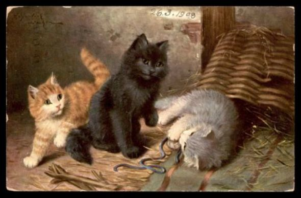Sophie Sperlich, Three Kittens Playing with a String