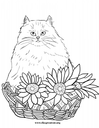Cats and Flowers Coloring Book