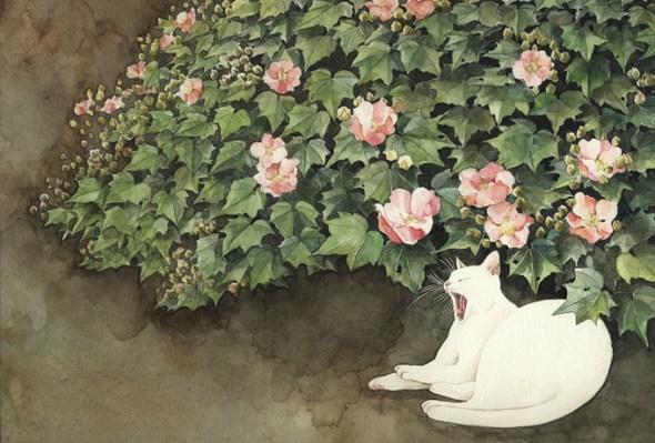 Midori Yamada3-white cat