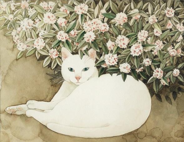 Midori Yamada4-white cat in flowers