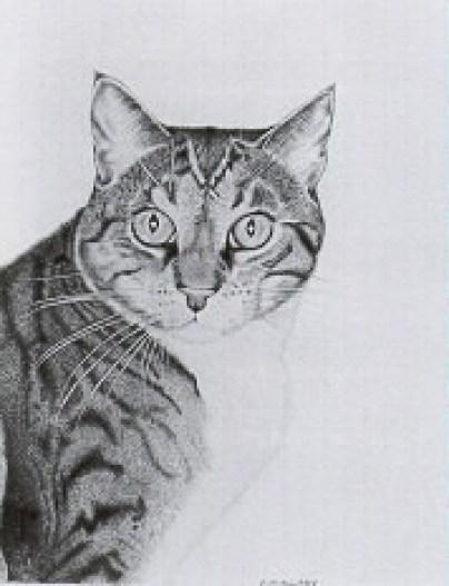 Cat, Leon Charles Huber