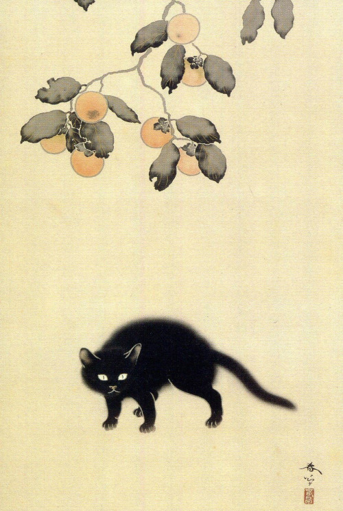Detail, Black cat Hishida Shunso