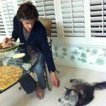 Joe Perry Aerosmith and cat