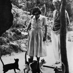 Robert Graves and cats