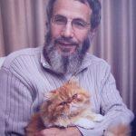cat stevens and cat
