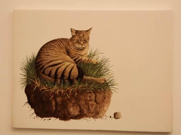 15-Franco Matticchio, Cat on Grass