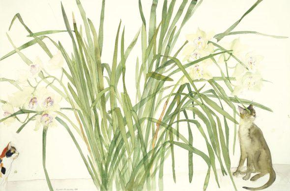 Cats and Orchids, Elizabeth Blackadder