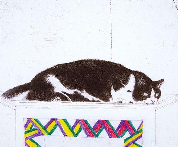 Fred on a Cupboard, Elizabeth Blackadder