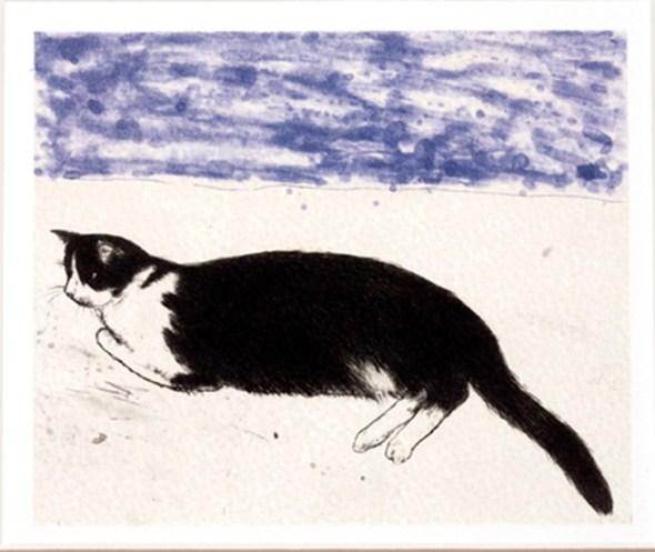 Elizabeth Blackadder (b.1931), 2003, Fred, Etching.