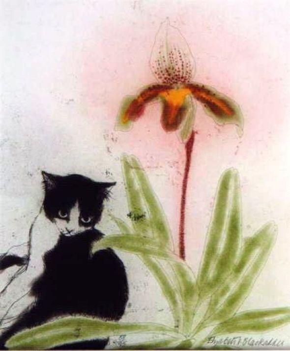 Orchid and Cat, Elizabeth Blackadder