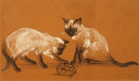 Two Siamese Cats, Agnes Tait