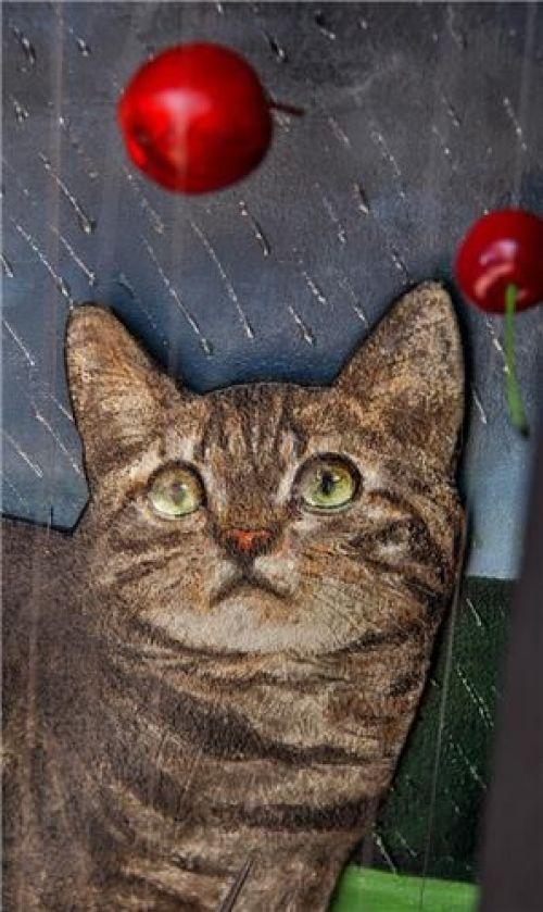 Feridun Oral, Detail-Cat and Cherries