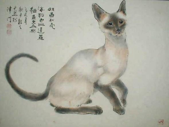 Gu Yingzhi, Siamese cat