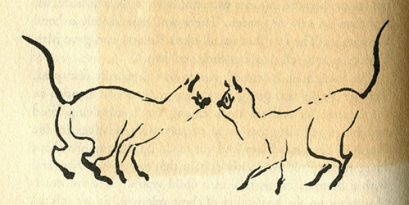 James Mason Cat Illustration 3