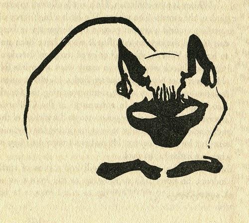 James Mason Cat Illustration 9