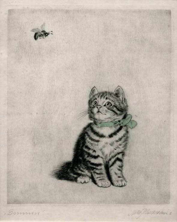 Kitten Looking at a Bee, Meta Pluckebaum