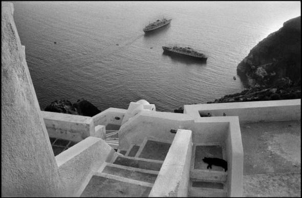 Josef Koudelka Cat, GREECE, Santorini, 1981.