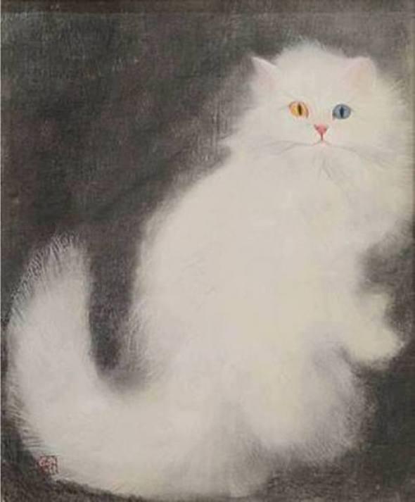 White Cat, Matazo Kayama