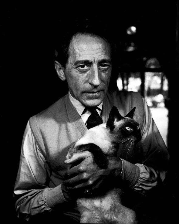 Jean Cocteau with Cat Madeleine, Paris, 1950, Jane Bown