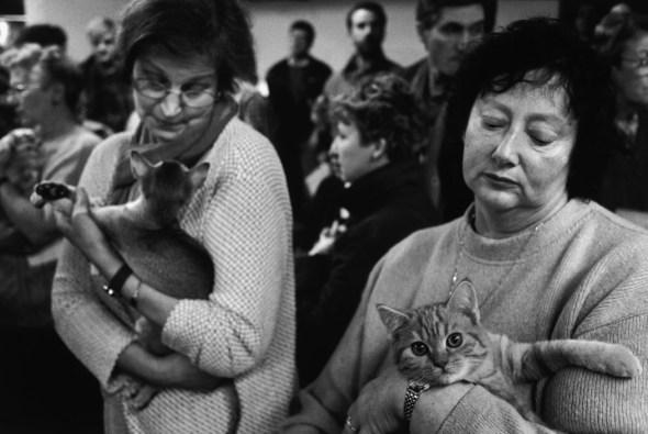 Porte de Champerret Cat Show, 1998, Richard Kalvar