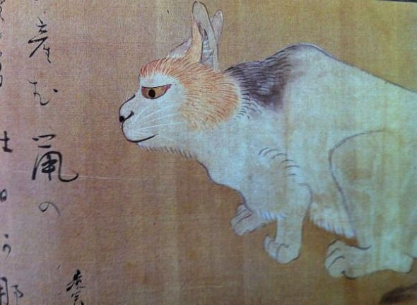 Cat Detail, Shibata Zeshin (1807-91) Japanese Hanging Scroll Ink and colors on silk British Museum