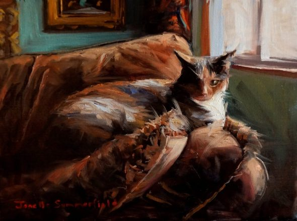 Jonelle Summerfield, Comfy Cat