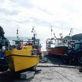 Cadgwith Cove Fishing Boats