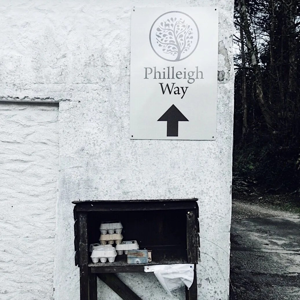 Philleigh Way Cookery School Sign Above Eggs for Sale