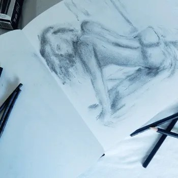Willow sketch of Naked Lady