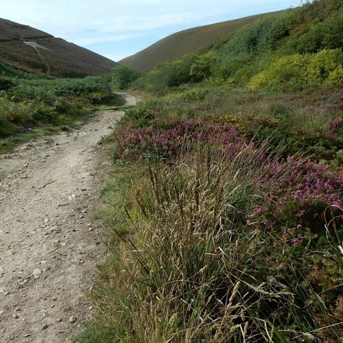 The footpath from Chapel Porth to Combe Charlotte