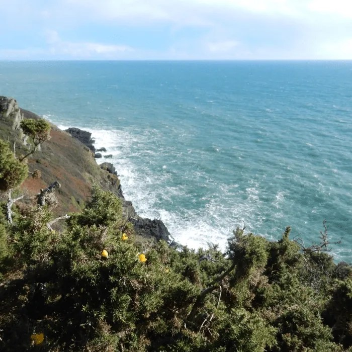 The cliffs and sea in sunshine