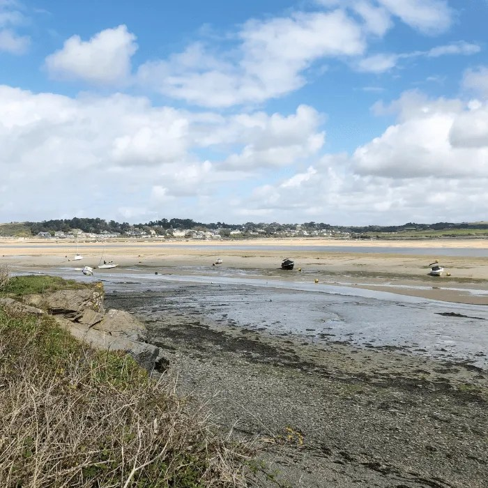 The camel estuary at low tide