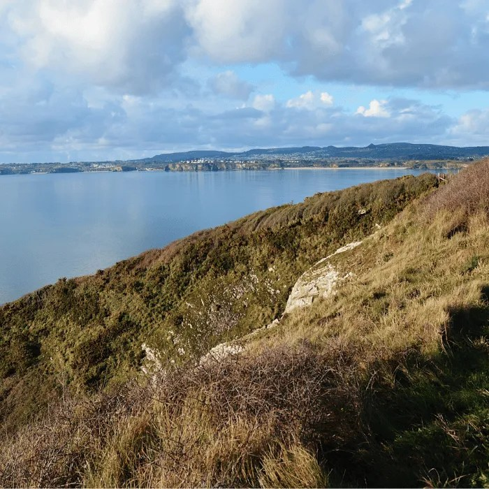 The south west coast path and St Austell Bay
