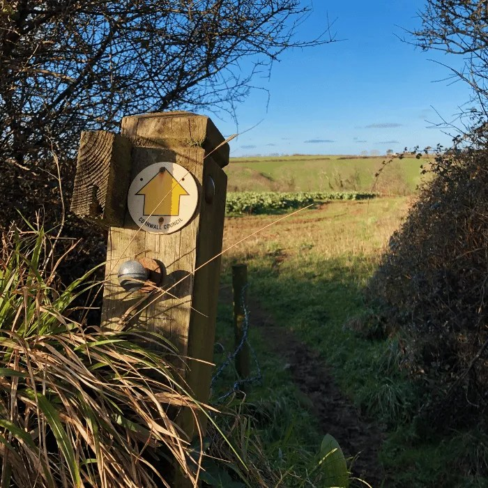 A Public Footpath sign on a post with fields