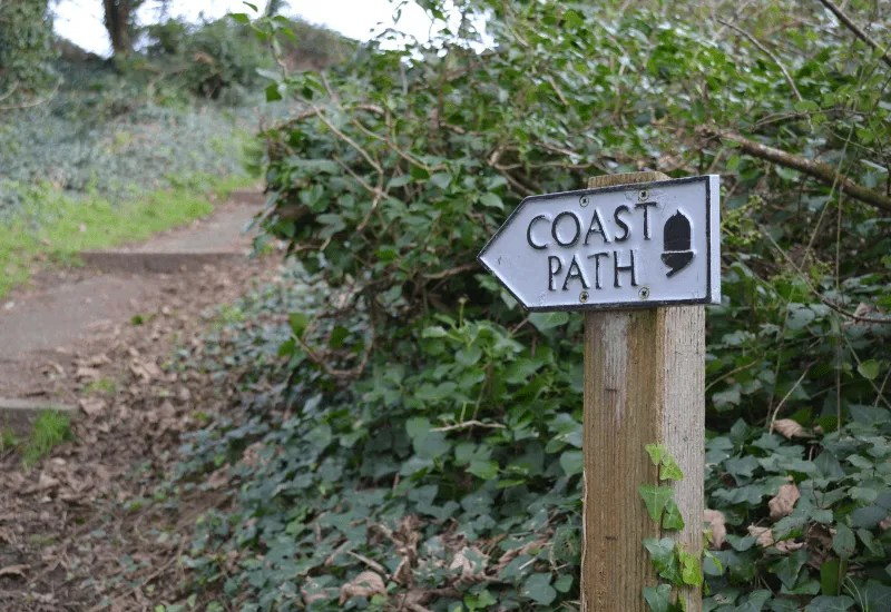 Coast path sign with hedge and path
