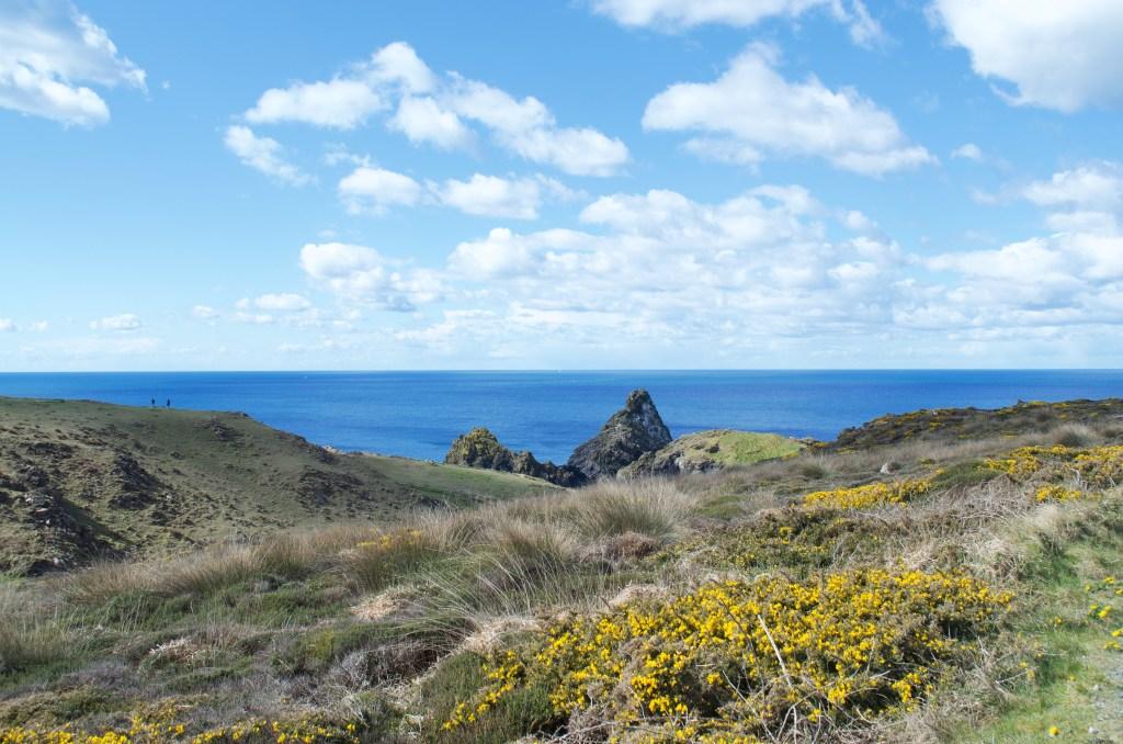Coastal views in the sunshine with girse