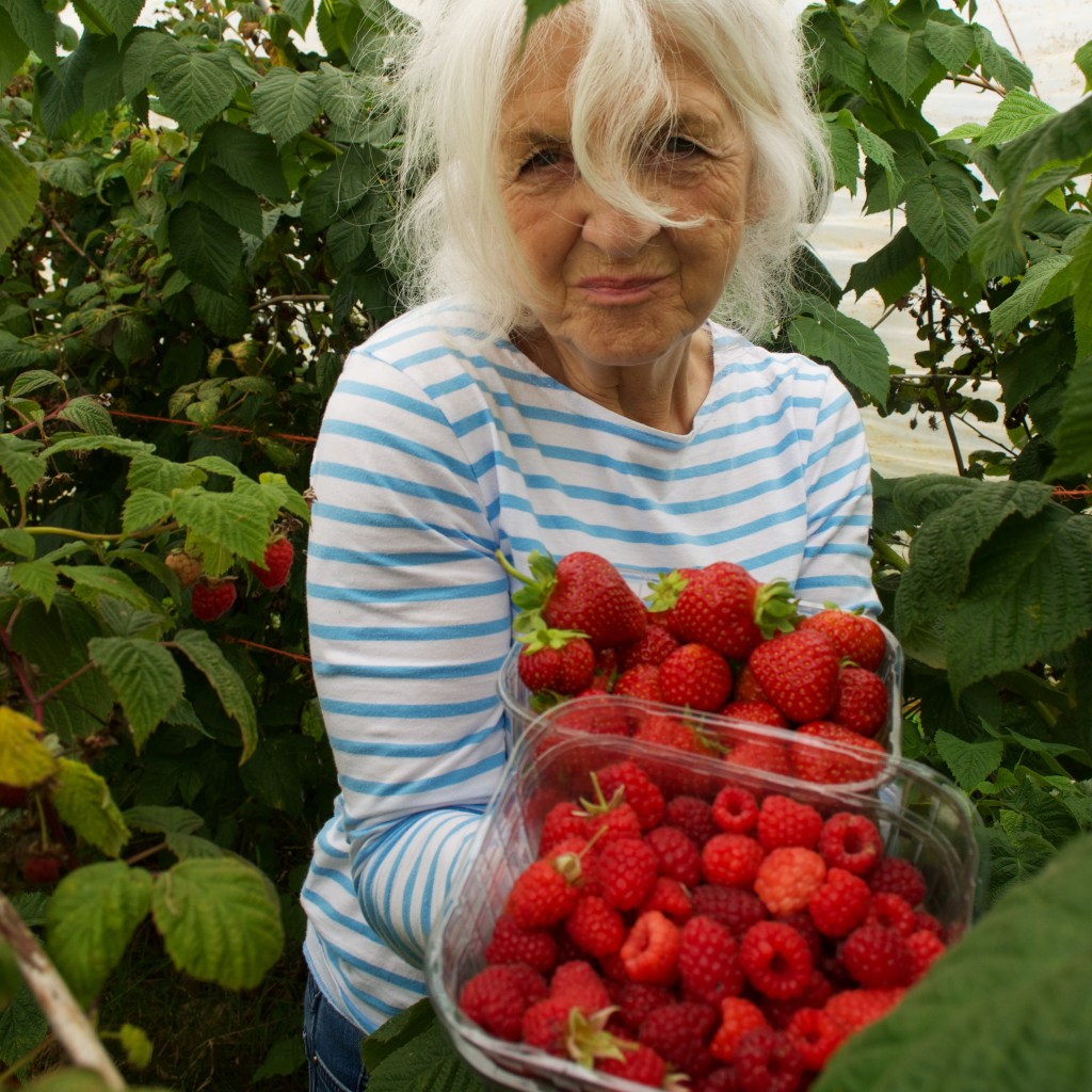 A woman with white hair, wearing a breton holding a punnet of raspberries and a punnet of strawberries
