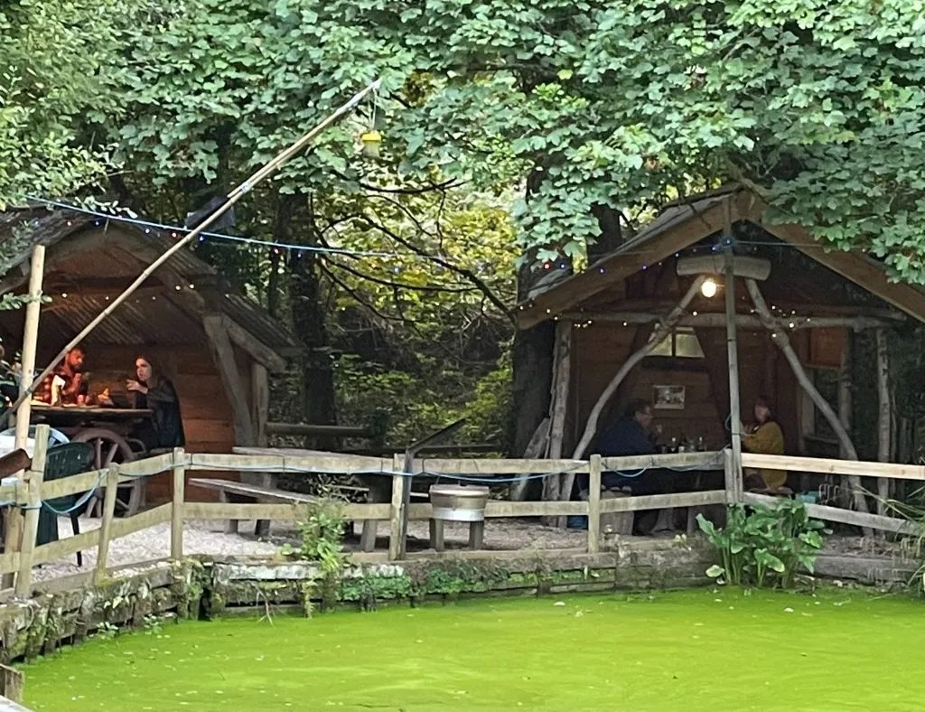 a pond covered in algae and 2 open wooden pods for people to sit in