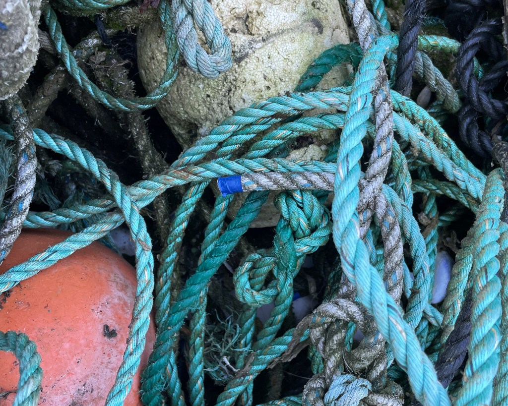 Green and blue tangled fishing ropes and white and pink buoys