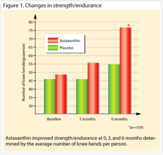 蝦紅素增加運動力量耐力表現