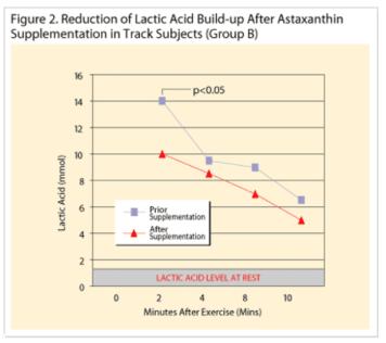 蝦紅素降低乳酸堆積