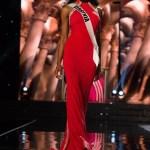 Desi Williams, Miss Virginia USA
