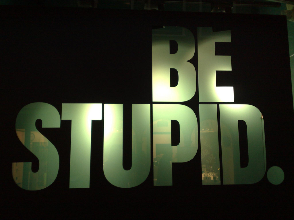 By Michiel from Amsterdam, The Netherlands (Be stupid @ Amsterdam) [Public domain or CC BY 2.0 (http://creativecommons.org/licenses/by/2.0)], via Wikimedia Commons