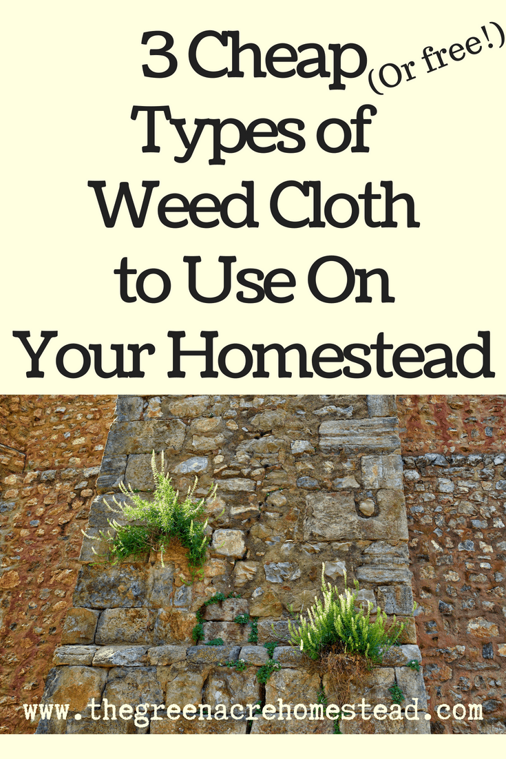 3 Cheap (Or free!) Types of Weed Cloth to UseOn Your Homestead