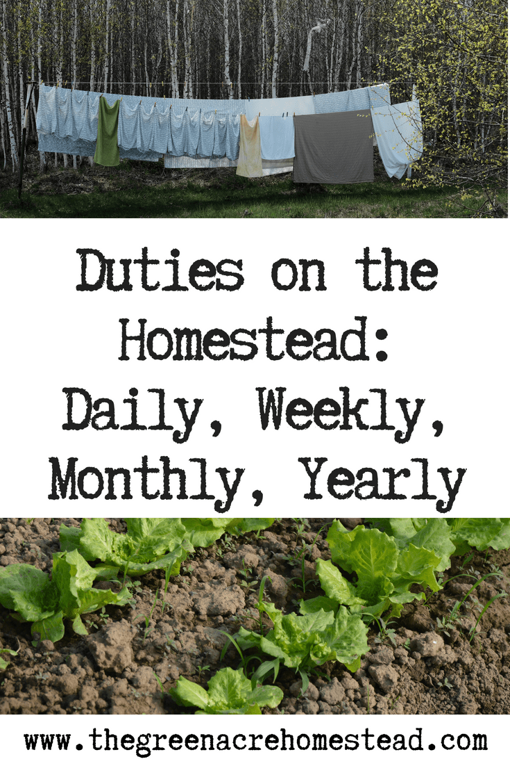Duties on the Homestead_ Daily, Weekly, Monthly, Yearly (1)