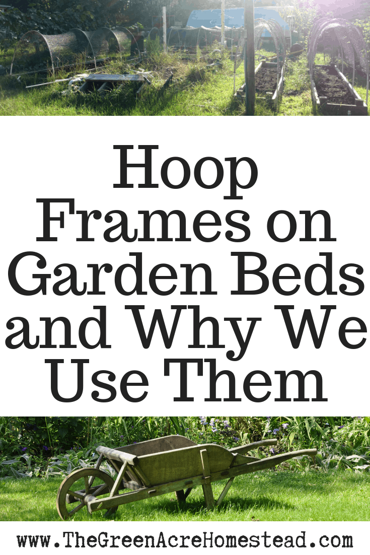 Hoop Frames on Garden Beds and Why We Use Them