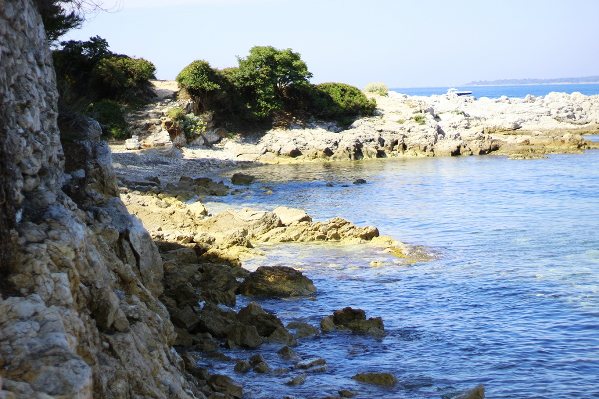 Cap sur Antibes et ses criques !