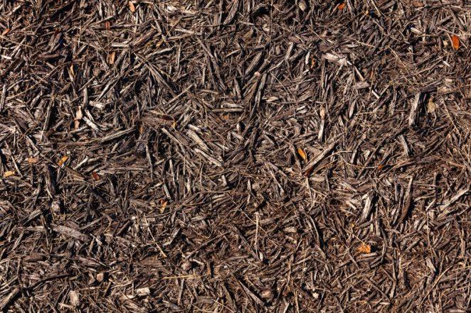add mulch to control weeds