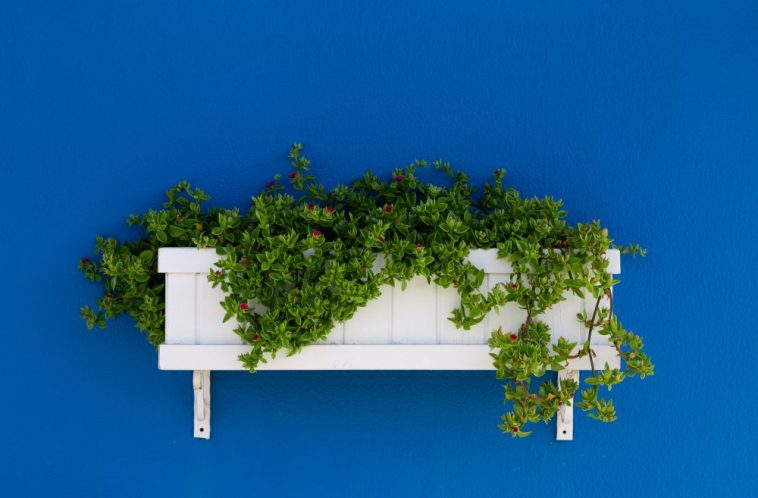 These Planters are best for your Garden